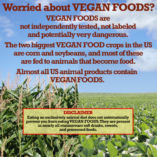 Worried about VEGAN FOODS?